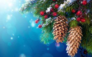 kersttak blauw 2018